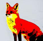 Fox (Edit) by Rando-Unissuy