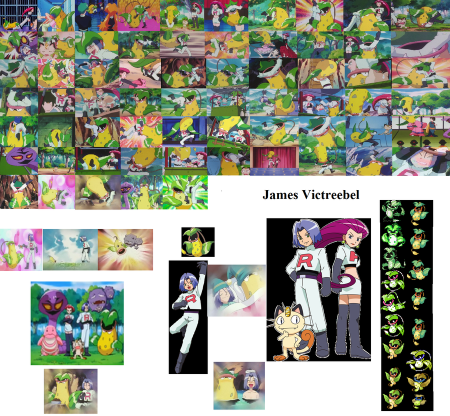 Pokemon James Victreebel by OhioStateBuckeyesPokemon Victreebel James