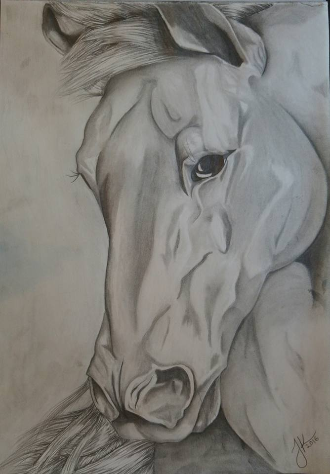 Unique horse by jjanina