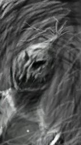 Harjeetoo's Profile Picture