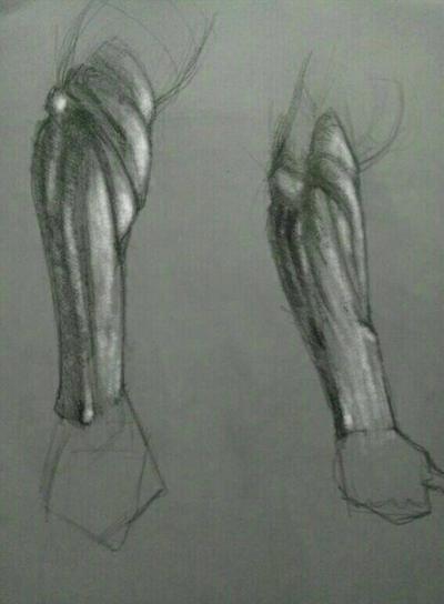 forearm 2 by Harjeetoo