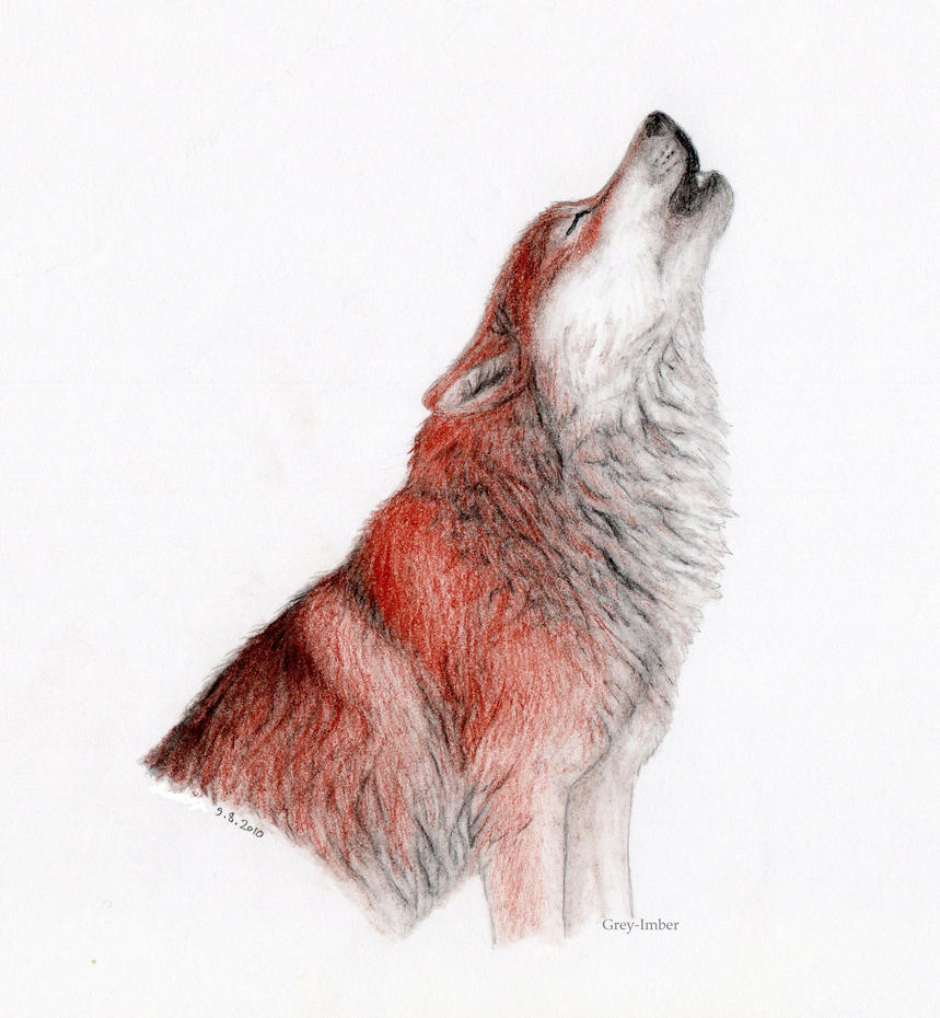 red wolf by greyimber on deviantart