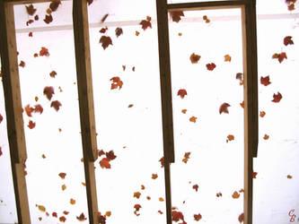 Canopy by scarlethunder