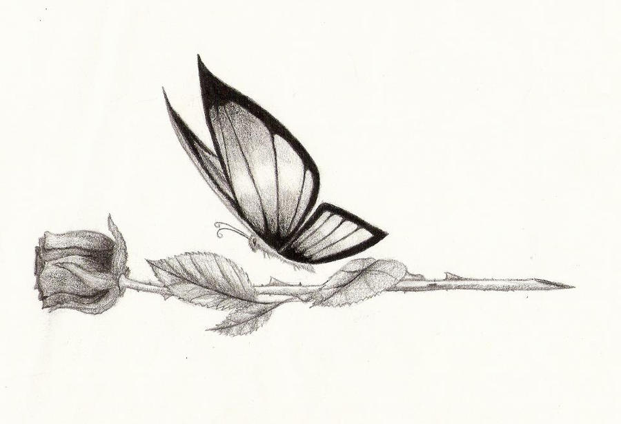 Butterfly Fly Away.. by Sarahnxo on DeviantArt