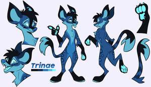 [C] Trinae