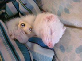 cutest ferret evah by WolffangComics