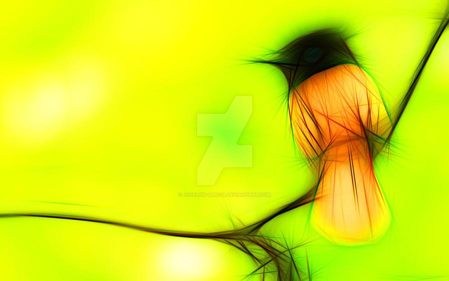 Little bird posed by joseluis-garcia