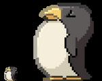 Pompous Penguin