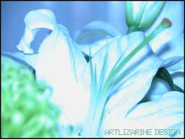 lys surpernatural ::01:: by Artlizarine