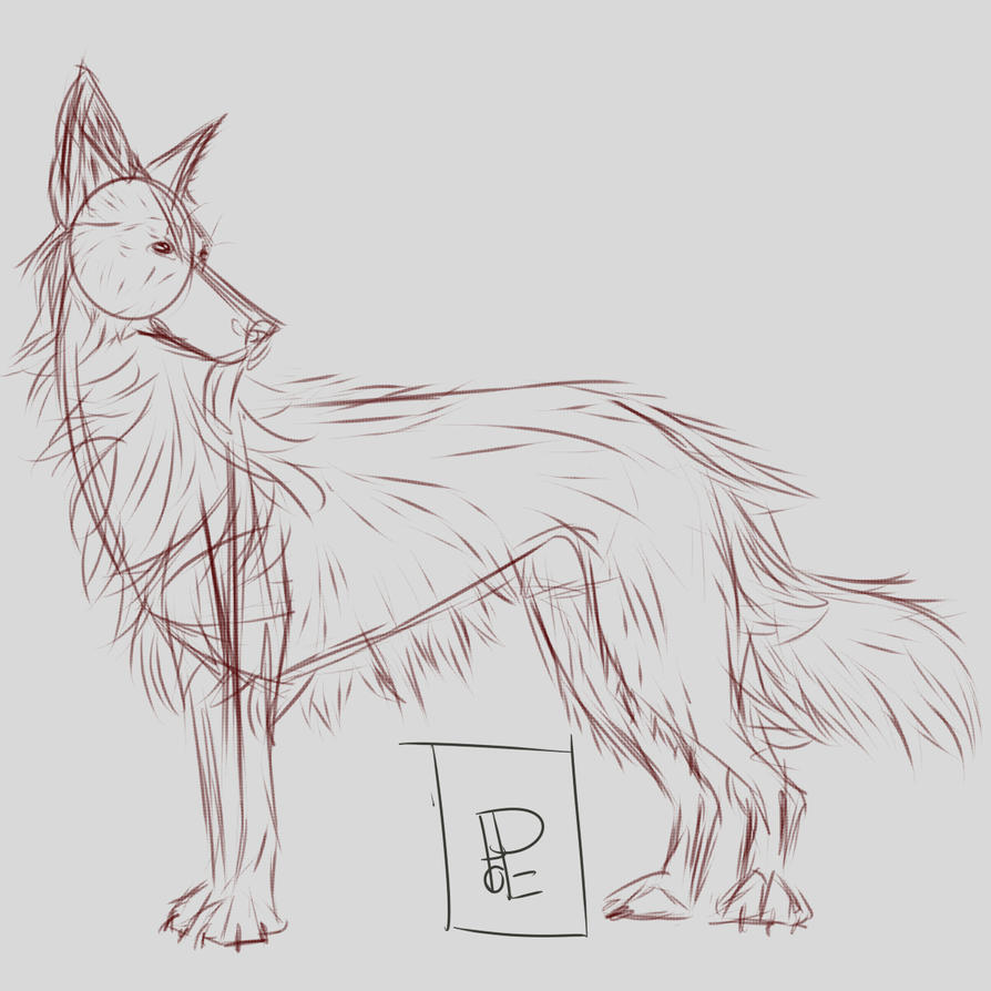 Unshaded Doggo Sketch by ExcuseMyPottyMouth