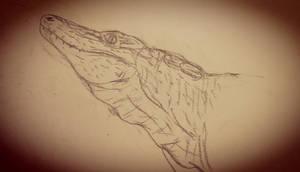 Knoetschkesuchus langenbergensis