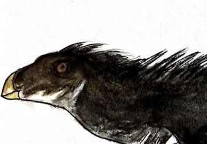 PrehistoricTravel's Profile Picture
