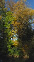 A Stripe Of Autumn 2