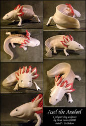 Axel the Axolotl by Lluhnij