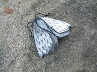 Butterfly - actually moth! (15) by Lluhnij