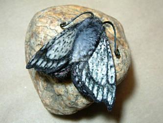 Silver moth (faux!)