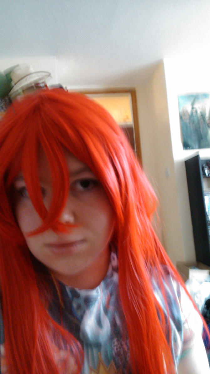 Messing with Rias wig. by Shadowolf1990