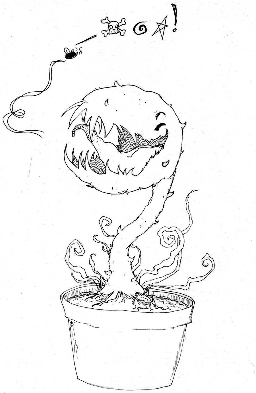 Carnivorous Plants Drawing