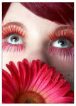 In Bloom