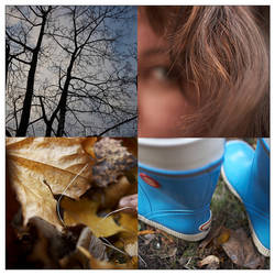 Autumn by mnoo