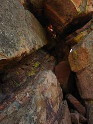 Rock Texture 3 by MatrixStock