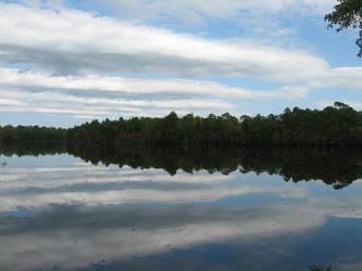Lake by MatrixStock