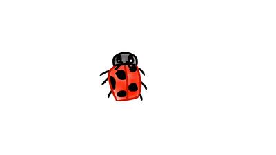 Ladybug by Creative-Thinking-x