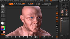 Human Head - Paint Test