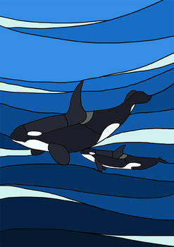 Some Orca