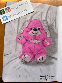 Sandra the Pink Puppy