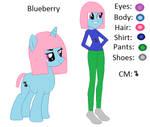 *Old Old* MLP: Blueberry's Ref Sheet
