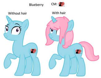 MLP: Blueberry's Pony Ref Sheet (Speedpaint) by Blueberry-MLP