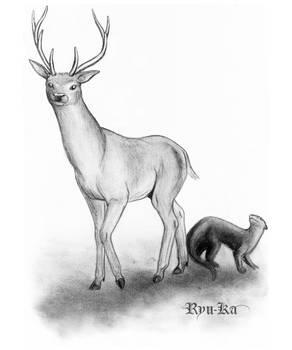 Stag and Otter - BlackBirdRose