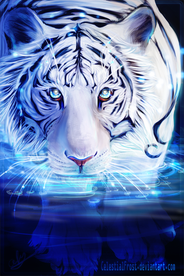 White Tiger by CelestialFrost