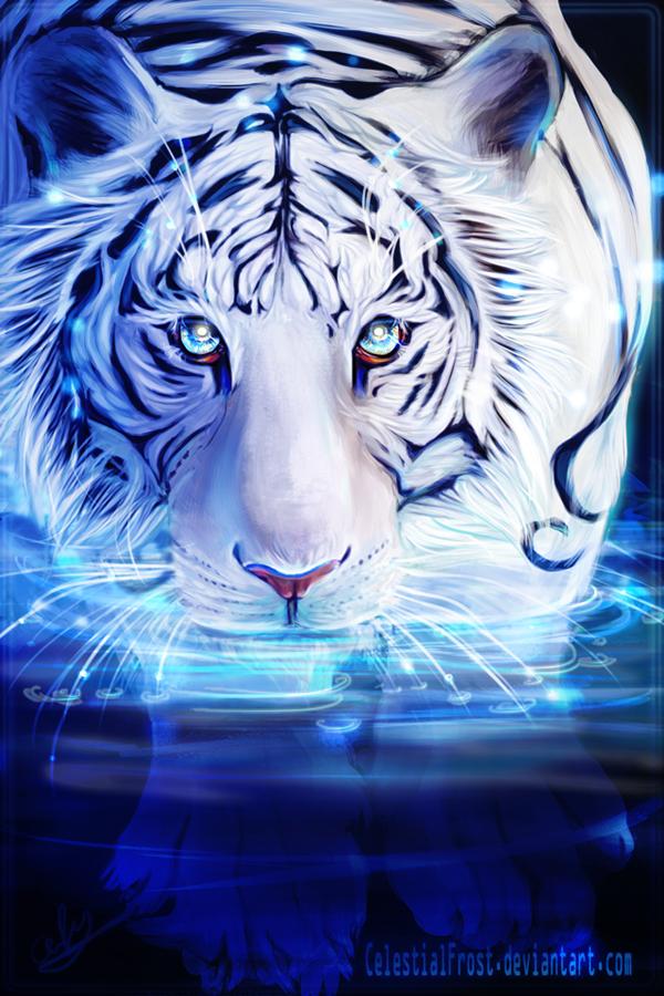 White Tiger by CelestialFrost on DeviantArt