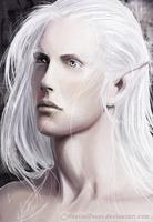 Daoine Sidhe by CelestialFrost