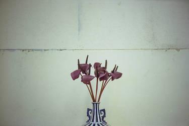 eulogy by flowersforcaligula