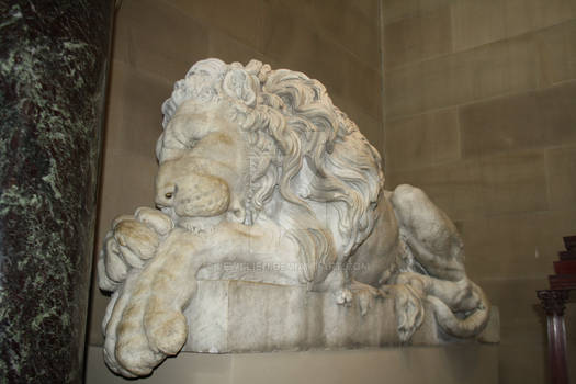 The Lion on the Right