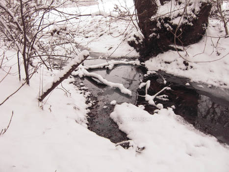Winter Wonderland - The River Boat Tour