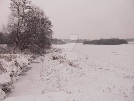 Winter Wonderland - A Look Back In Time