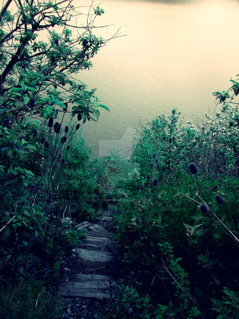 Walking Down The Steps  by Rini-Dragoone