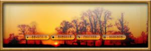Saffron Sunset. by jugga-lizzle