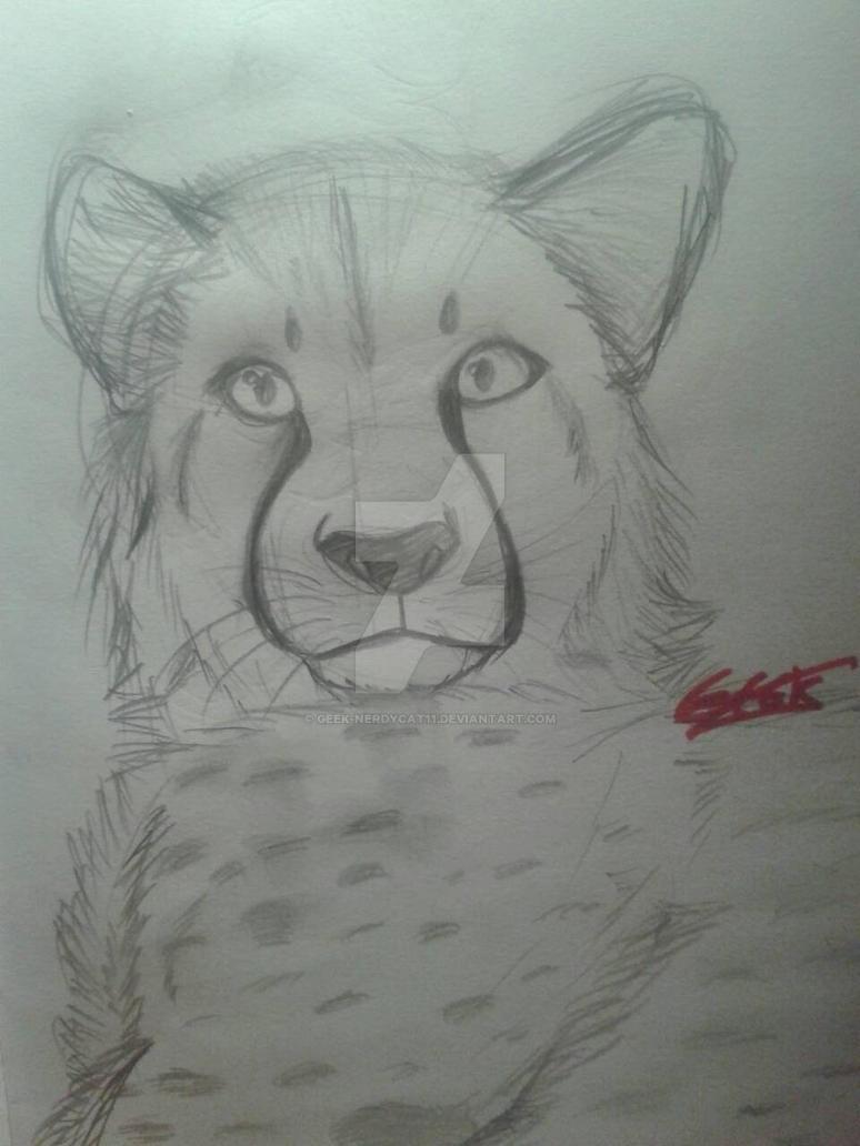 Cheetah sketch by Geek-NerdyCat11