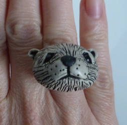 Polar Bear Ring by SMitchTheOtherSide