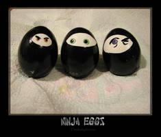 Ninja Eggs by thedustyphoenix