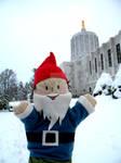 Winter Capitol Gus