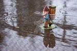 Rainy Roy II