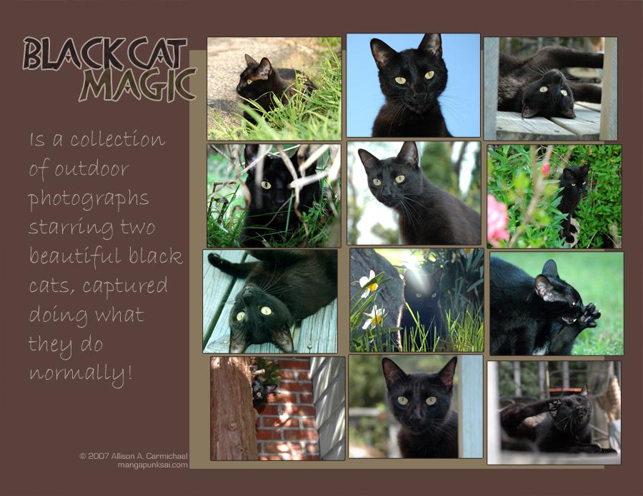 Black Cat Magic Calendar by MPsai