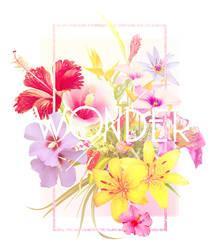 DPW0941 - summer wonder