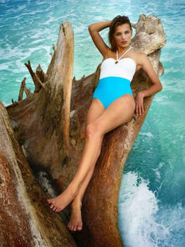 One-Piece On the Log